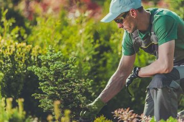 Rasen- und Gartenpflege
